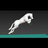 08 53 55 648 horse jumping 4