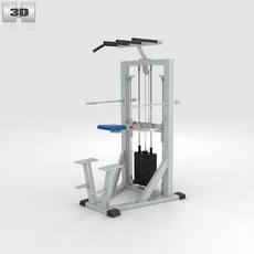 Chin Up Station 3D Model