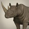10 03 17 327 realistic rhinoceros 02 4