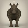 10 03 18 168 realistic rhinoceros 03 4