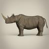 10 03 23 74 realistic rhinoceros 04 4