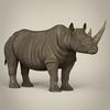 10 03 25 532 realistic rhinoceros 07 4