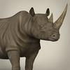 10 03 26 343 realistic rhinoceros 08 4