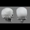 11 02 38 526 skull final copyright 05 4