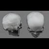 11 03 30 636 skull final copyright 09 4