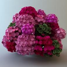 Plants in White Pot 3D Model
