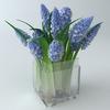 11 56 28 162 bouquet5 1 4