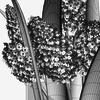 11 56 38 720 bouquet5 4 4