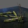 12 00 02 731 decayed tree bark06 4