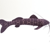 12 18 26 670 catfish 3 4
