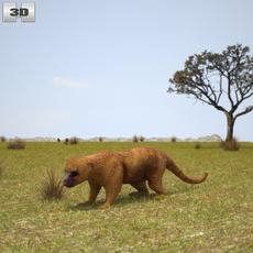 Kinkajou (Potos Flavus) 3D Model