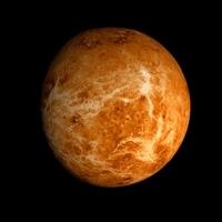 Animated 2K Venus Model 3D Model