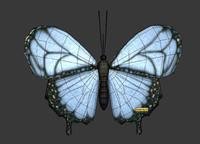 Buttefly 3D Model
