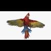 14 58 49 26 parrotblendpic10 4
