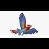 14 58 51 729 parrotdisplaypic2 4