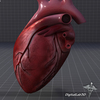 15 03 36 874 dl3d heartdetailed 7 4