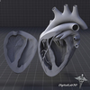 15 03 37 862 dl3d heartdetailed grayscale 4