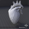 15 03 38 935 dl3d heartex grayscale 4