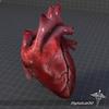 15 03 49 723 dl3d heartex 2 4