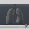 15 09 43 695 dl3d lungsd wireframe 4
