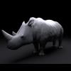 15 39 08 68 stwerrio rhinorender02 4