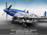 North American P-51D Mustang - Moonbeam McSwine 3D Model