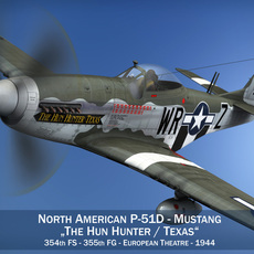 North American P-51D - The Hun Hunter Texas 3D Model