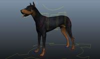 Dog 0.0.2 for Maya