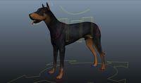 Free Dog for Maya 0.0.2