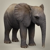 16 38 45 587 realistic low poly baby elephant 06 4
