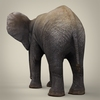16 39 08 689 realistic low poly baby elephant 04 4