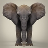 16 39 09 493 realistic low poly baby elephant 02 4