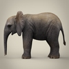 16 39 10 251 realistic low poly baby elephant 03 4