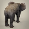 16 39 11 42 realistic low poly baby elephant 05 4
