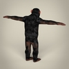 16 44 30 448 realistic low poly chimpanzee 05 4