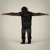 16 44 31 230 realistic low poly chimpanzee 04 4