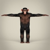 16 44 33 154 realistic low poly chimpanzee 02 4