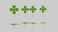 Four Leaf Clover Pack 3D Model