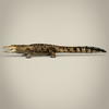 17 06 53 759 low poly realistic crocodile 03 4