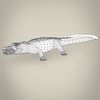 17 06 59 596 low poly realistic crocodile 08 4