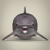 17 07 01 992 low poly realistic dolphin 02 4