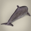 17 07 06 591 low poly realistic dolphin 06 4