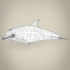 17 07 08 69 low poly realistic dolphin 08 4