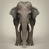 17 07 10 992 low poly realistic elephant 02 4
