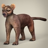 17 37 56 717 low poly realistic fossa 01 4