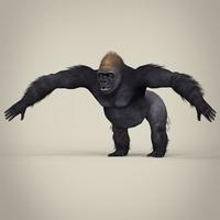 Low Poly Realistic Gorilla 3D Model