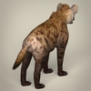 17 38 10 135 low poly realistic hyena 05 4