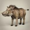 17 38 11 593 low poly realistic warthog 01 4
