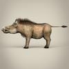 17 38 17 566 low poly realistic warthog 03 4