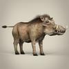 17 38 19 850 low poly realistic warthog 06 4